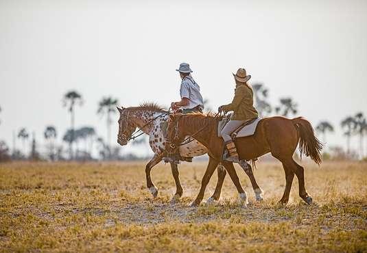 Horse safari, Botswana