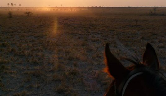 Riding into the sunrise in horseback