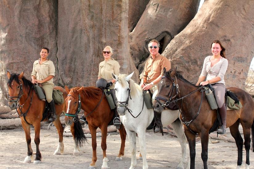 Horse riding, Chapman's baobab