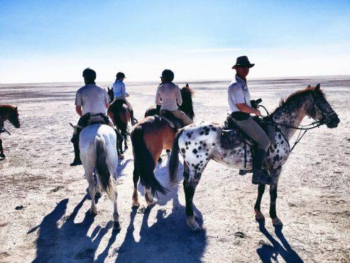 Horse safari, Makgadikgadi salt pans