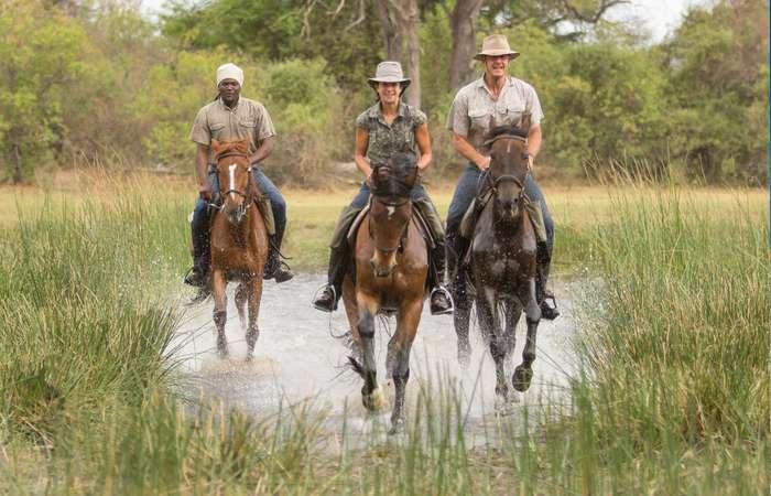 Horse riding, Okavango Delta