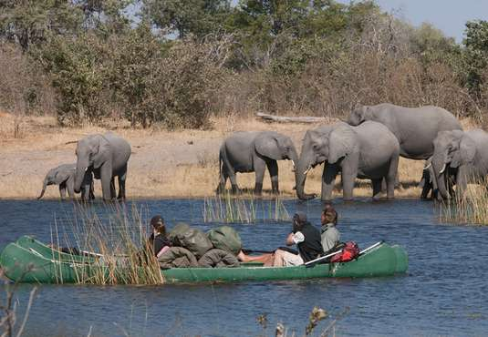 Watching elephants on a canoe safari