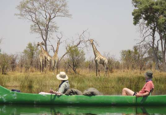 Watching giraffes on canoe safari