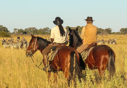 Horse riding past zebra herd, Okavango Delta