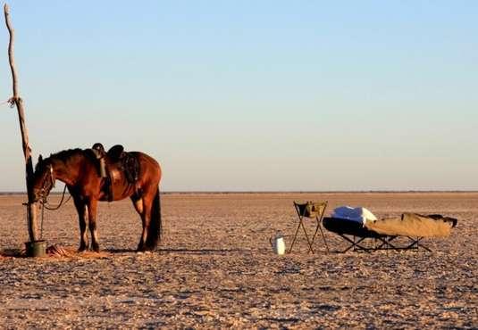 Camp bed, Makgadikgadi Pans