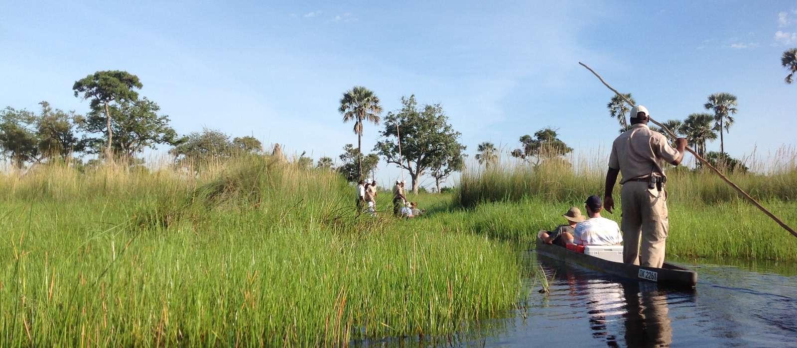 Mekoro trrip, Okavango Delta