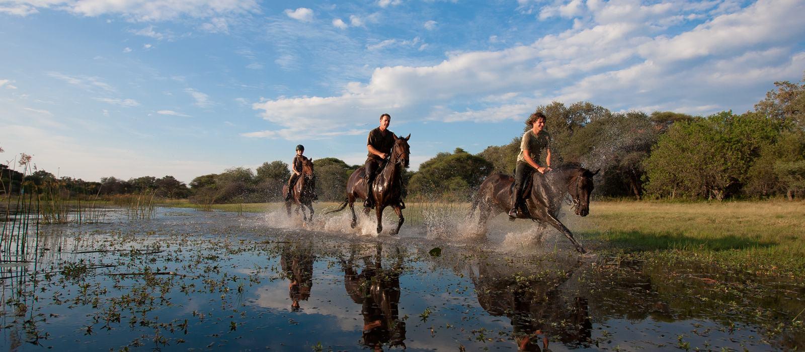 Thamalakane River gallop on horseback