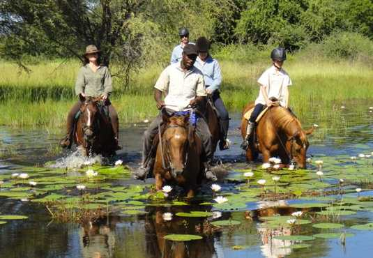 Crossing Thamalakane River on horseback