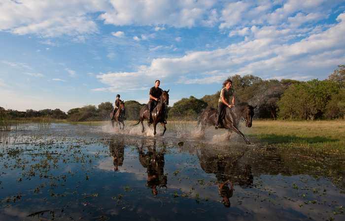 Thamalakane River horse ride